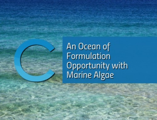 An Ocean of Formulation Opportunity with Marine Algae