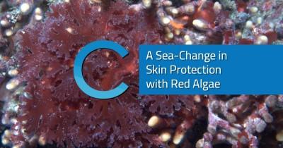 Sea-Change Skin Protection