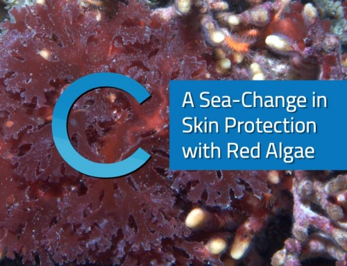 A Sea-Change in Skin Protection with Red Algae