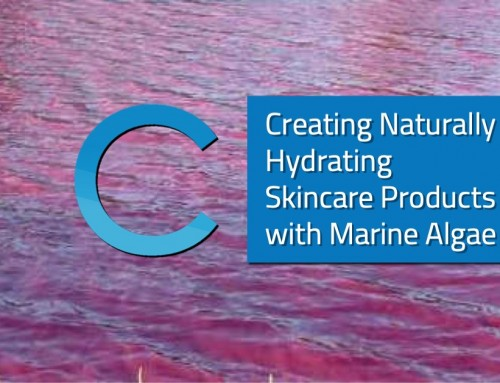 Creating Naturally Hydrating Skincare Products with Marine Algae