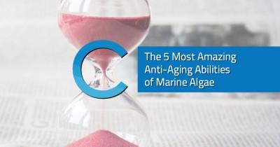 5 Amazing Anti-Aging Marine Algae
