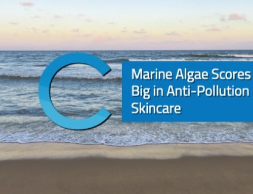 Marine Algae Scores Big in Anti-Pollution Skincare